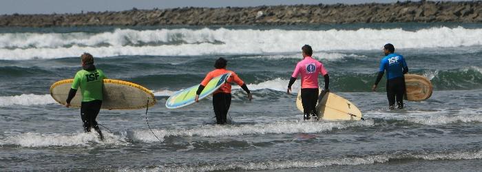 surfing information